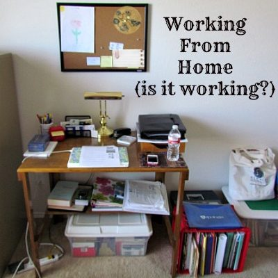 Working from Home (is it working?)